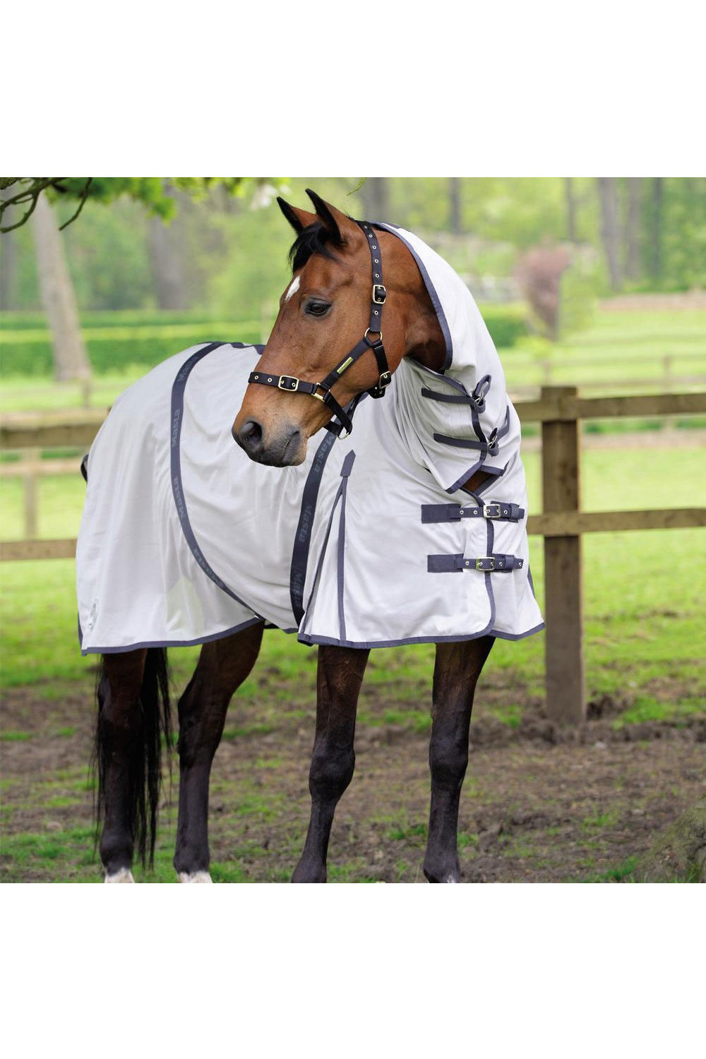 Masta Fly Rug Zing Mesh With Fixed Neck Silver Fly Rugs