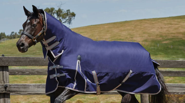horse-rugs-sheets-c-202_203.html