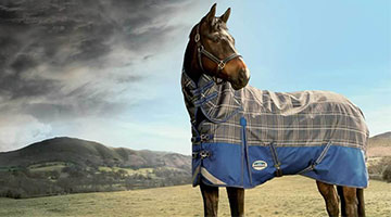 Why and When to Rug your Horse