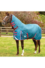Weatherbeeta Comfitec Plus Dynamic Combo Neck Medium/Lite - Teal / Cerise / Yellow