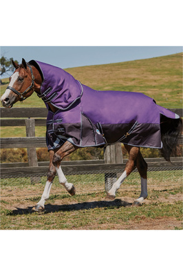 Weatherbeeta Comfitec Plus Dynamic Detach-A-Neck Neck Lite - Purple / Black