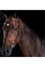 Collegiate Comfitec Training Bridle - Brown