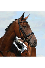 Collegiate Syntovia+ Padded Raised Flash Bridle - Black