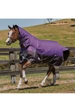 Weatherbeeta Comfitec Plus Dynamic Combo Neck Lite Purple / Black