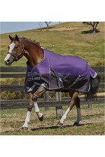 Weatherbeeta Comfitec Plus Dynamic Standard Neck Medium Lite Purple