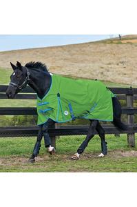 Weatherbeeta Comfitec Classic Standard Neck Lite Bright Green / Blue