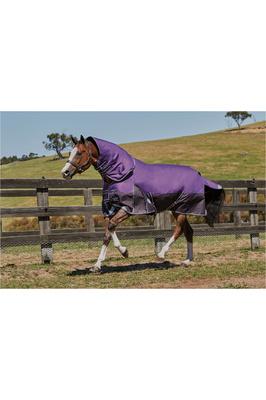 Weatherbeeta Comfitec Plus Dynamic Detach-A-Neck Medium Purple / Black