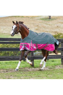 Weatherbeeta Comfitec Plus Dynamic Standard Neck Lite Sea Green / Pink