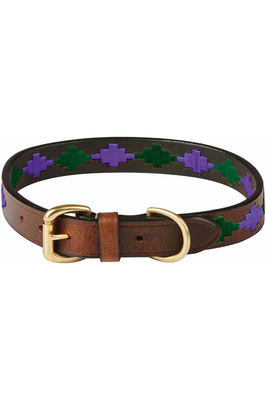 Weatherbeeta Polo Leather Dog Collar - Beaufort Brown / Purple / Teal