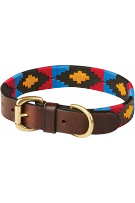 Weatherbeeta Polo Leather Dog Collar - Cowdray Brown / Pink / Blue / Yellow